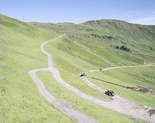 MAXIMILIAN HAIDACHER / PHOTOGRAPHY Alpenrose